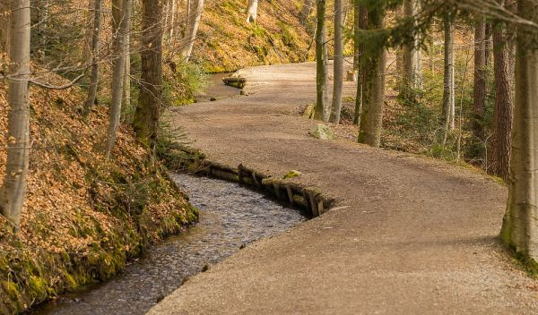 God will make your crooked path straight - Church for